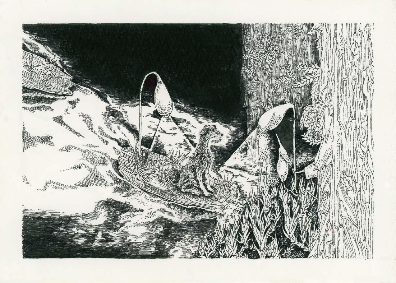 <p>AKT秋田テレビ特別賞</p> <p>「コケの島」</p> <p>小林 祐子 Kobayashi Yuko<br /> (アーツ&ルーツ専攻)</p> <p>ペンで描かれた苔の絵は、苔や伝承とフィールドワークでの経験を元に、独自の物語を生み出し、突出したクオリティで表現されている。苔の生態等の研究や栽培と、現地でのスケッチや撮影など、継続して取り組んできたことが確かな裏付けとなり、他に類を見ない世界を生み出した傑作である。</p> <p>平面作品 ペン画10点、本1冊</p>