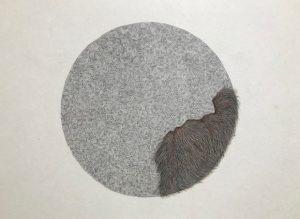 「営みの標本」2018